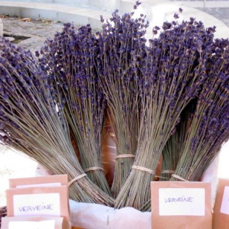 Lavender and Verveine